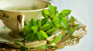 A Chinese herb